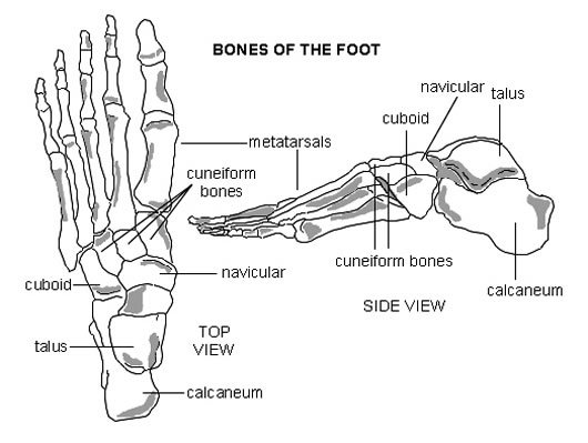 Update  New Foot Problems For Eli Manning